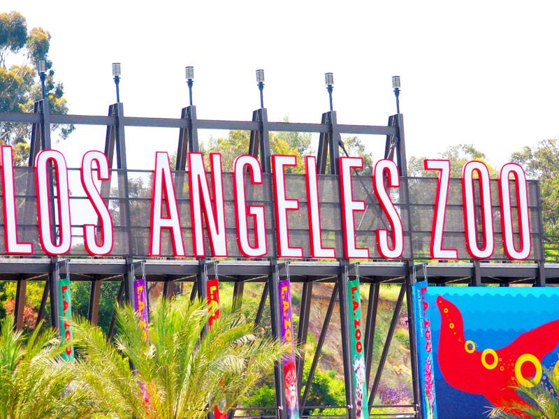 Los_angeles_zoo